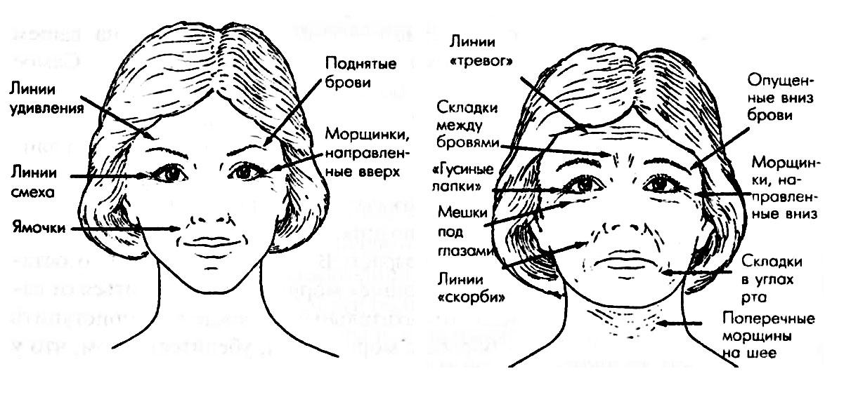 Морщины на лбу значение в картинках соответствие