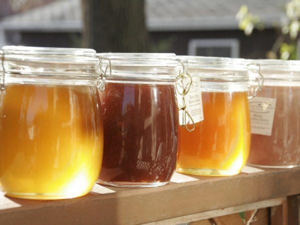 Мёд разных сортов в прозрачных банках