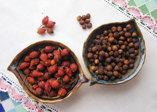 Сухие ягоды шиповника и можжевельника