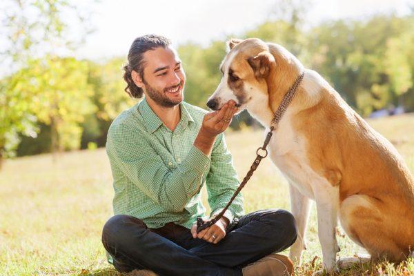 Мужчина сидит рядом с собакой