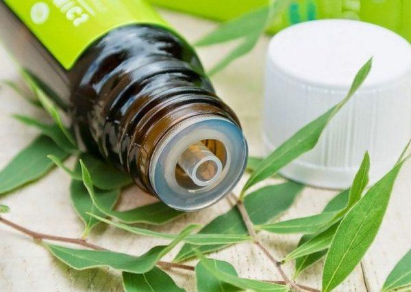 Эфирное масло чайного дерева в бутылочке