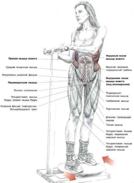 Схема: работа мышц при поворотах на диске