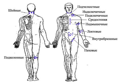 Лимфоузлы на теле человека