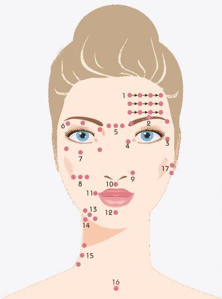 Карта активных точек Шиацу на лице
