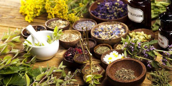 Травы традиционной медицины в чашах и ступка для растирания