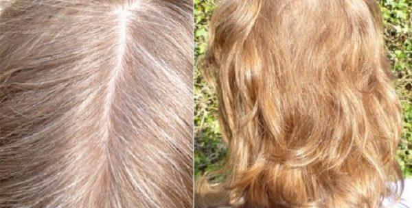 Волосы до и после окрашивания отваром ромашки