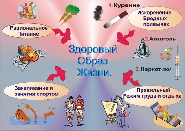 Составляющие здорового образа жизни